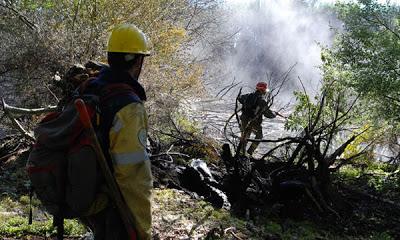 Confirmaron que incendios forestales en San Martín de los Andes son intencionales