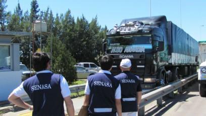 control_del_senasa_fyo_argentina