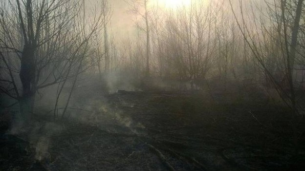 incendio pastizales