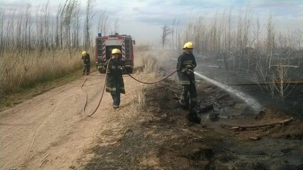 bomberos senillosa apagando chacra