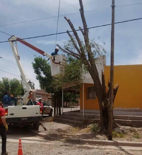 En distintos sectores se registró la caída de ramas y cables.