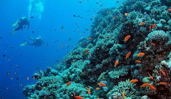 Iniciativa-de-la-ONU-para-salvar-los-oceanos-574x333