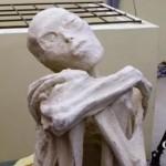 Hallaron una polémica momia y creen que es de un extraterrestre