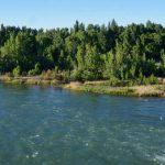 Los recortes en obras públicas de Nación conducen a un colapso cloacal en el Río Neuquén