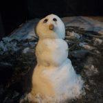 Llegó la nieve y la lluvia durante la madrugada en Neuquén