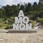 Artista cordobés acusa de plagio a la Municipalidad de Neuquén
