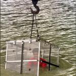 Ilusionista desapareció bajo el agua tras hundirse atado de pies y manos en un río