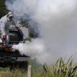 El otro dolor de cabeza en Argentina: casi 6 mil casos de dengue en una semana