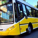 Once líneas de colectivo dejarán de pasar por Avenida Argentina