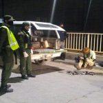 Guardafaunas capturaron pescadores furtivos