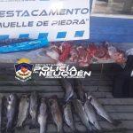 Personal policial detuvo a dos personas por caza furtiva en Villa La Angostura