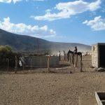 Emergencia hídrica: se reunió comité para analizar la extensa sequía y plantear ideas para abordar la situación a futuro