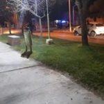 Conductor borracho chocó contra un auto estacionado
